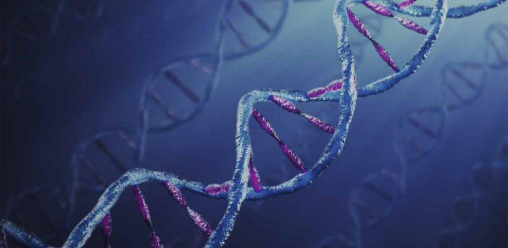Ativação de espírito: Ativação de DNA